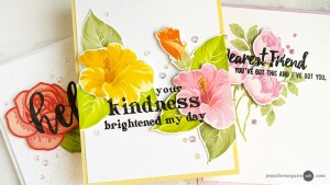 Technique: Dimensional Sentiments Cards