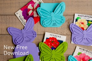 Butterfly Pocket Die Download