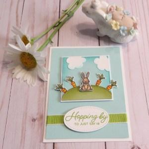 Garden Bunny Card