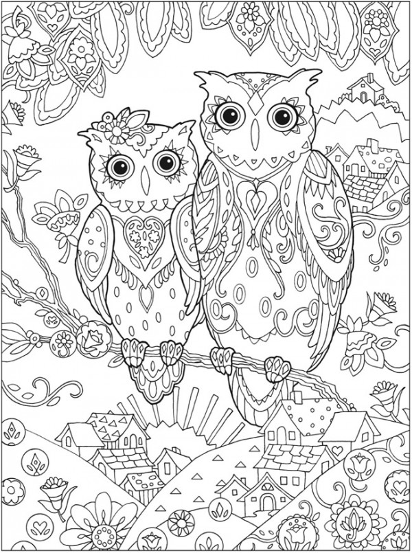 4 Owl Coloring Pages