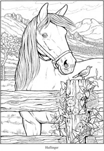 6 Horse Coloring Pages
