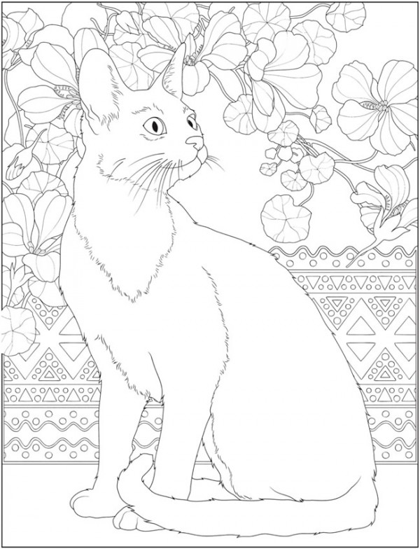 6 Cat Coloring Pages