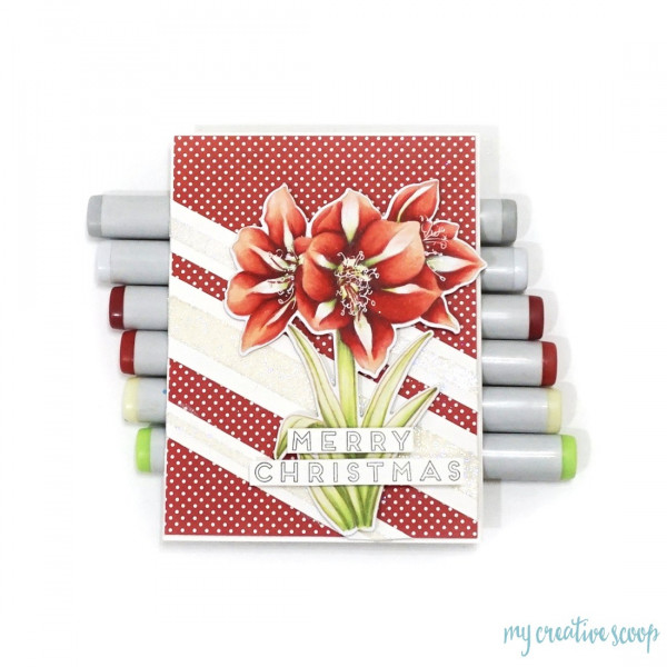 How to Color a Christmas Lily Card