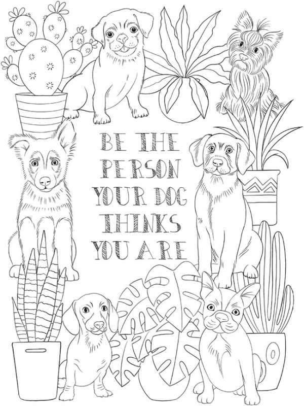 6 Pet Coloring Pages