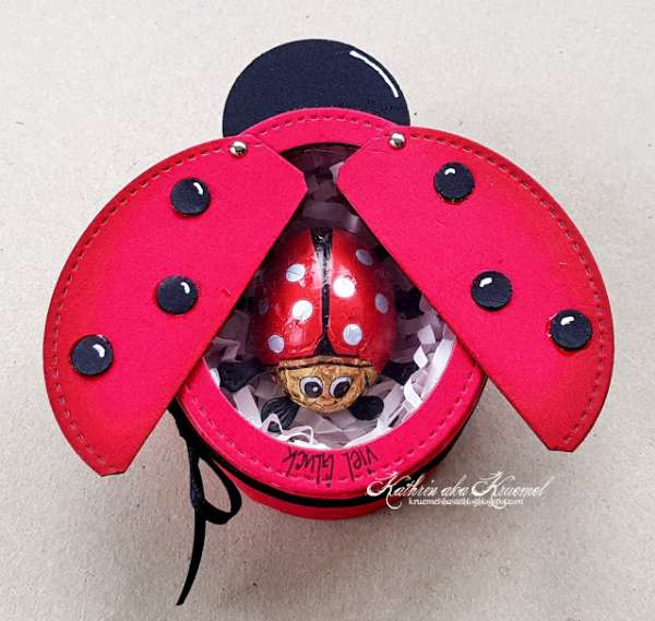 Lady Bug Box with Cut File