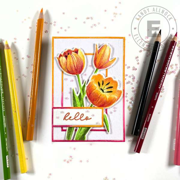 Tulip Notecard with Colored Pencils