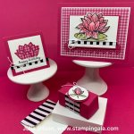 All occasion cards and treat box using Stampin
