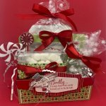 12 Day of Christmas Projects created by Julie Gilson, Stampingala.com. #Stampin