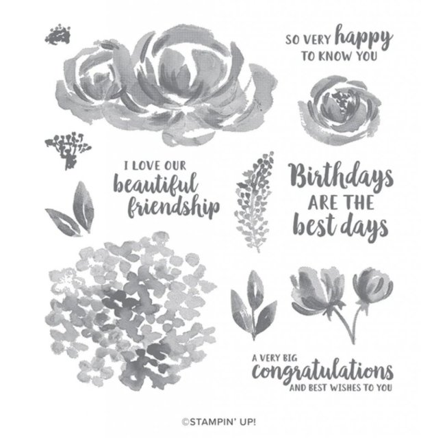 Handmade greeting cards and gift box created with Stampin' Up's Beautiful Friendship stamp set.  #Stampin' Up, #Stampin' Gala, #Monthly Club, #Card Kit