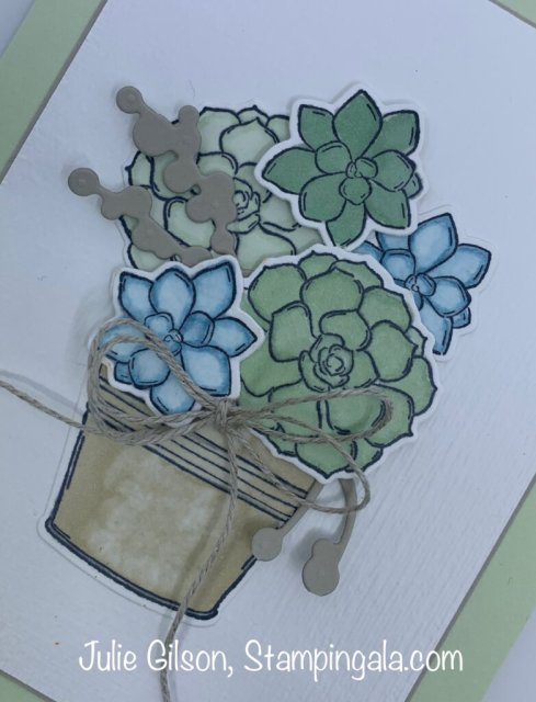 Greeting Card created with Stampin' Up's Simply Succulents stamp set. #Stampin' Gala, #Julie Gilson, #All Occasion Cards, #Birthday