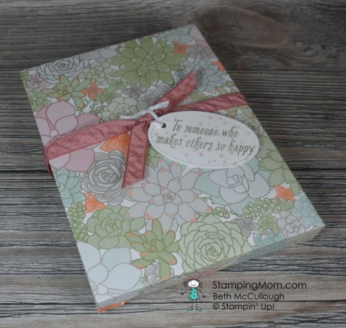 Stampin Up Envelope Punch Board box with three coordinating cards and envelopes makes a CAS set for gift giving designed by demo Beth McCullough. Please see more card and gift ideas at www.StampingMom.com #StampingMom #cute&simple4u