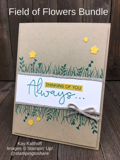 How to Make a Late Summer Card with Stampin' Up! Field of Flowers Bundle by Kay Kalthoff with Stamping to Share