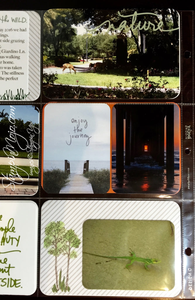 stampin up, project life, ali edwards, Capturing nature - Michelle Gleeson, scrapbooking