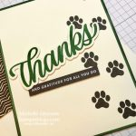 Thanks from your furry friend