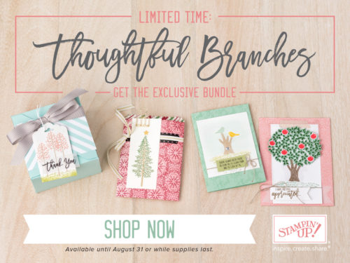 Thoughtful Branches Bundles Stampin Up