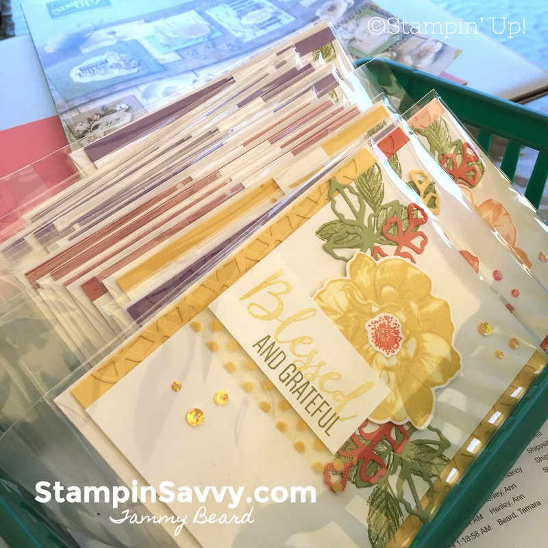 JUNE-CUSTOMER-REWARDS-HANDMADE-CARD-STAMPIN-SAVVY-TAMMY-BEARD