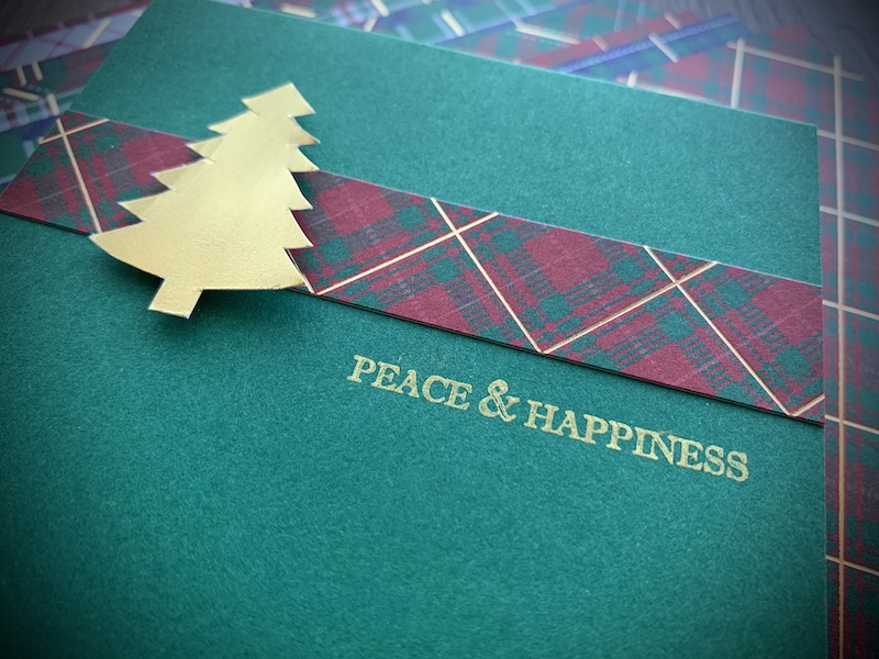 WRAPPED-IN-PLAID-MADE-IN-MINUTES-CARD-4-TAMMY-BEARD-STAMPIN-SAVVY-STAMPIN-UP-2