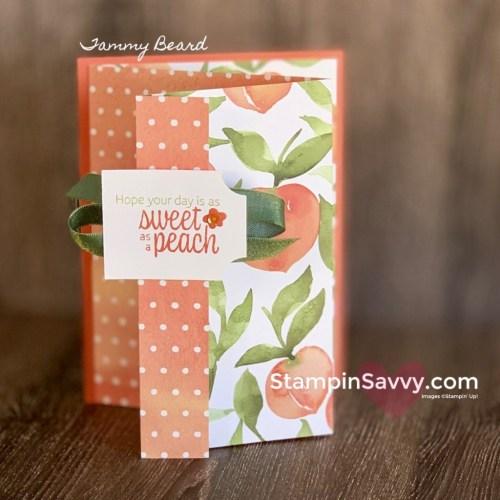 YOURE-A-PEACH-FUN-FOLD-BIRTHDAY-CARD-TAMMY-BEARD-STAMPIN-SAVVY