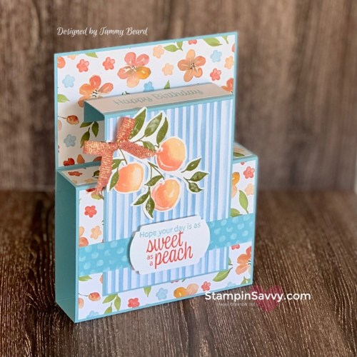 YOURE-A-PEACH-SUITE-SAMPLER-KIT-CARD-2-TAMMY-BEARD-STAMPIN-SAVVY
