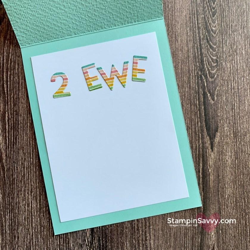HAPPY-BIRTHDAY-2-EWE-CARD-COUNTING-SHEEP-TAMMY-BEARD-STAMPIN-SAVVY-STAMPINUP