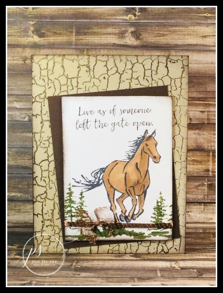 Stampin' up! Let it Ride stamp set, Crackle Paint stamp set, Stampin' Studio