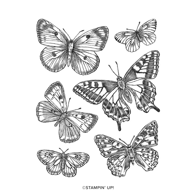 Stampin' Up! Butterfly Brilliance Collection, Stampin' Studio