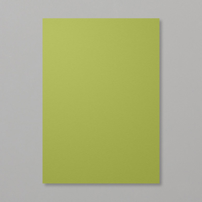 Old Olive A4 Cardstock