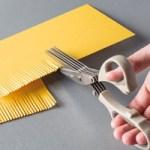 Fringe Scissors133325 Price: $10.00