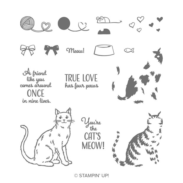 Nine Lives Stamp Set by Stampin' Up!