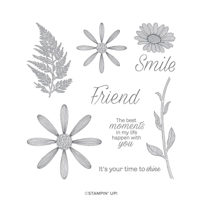 The Daisy Lane Stamp Set from Stampin' Up includes five image stamps and four sentiment stamps.  Coordinates beautifully with two matching punches available in the annual catalog. Purchase this and other Stampin' up products on StampKnowHow.com.