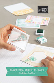 Stampin Up Beginner Brochure Image