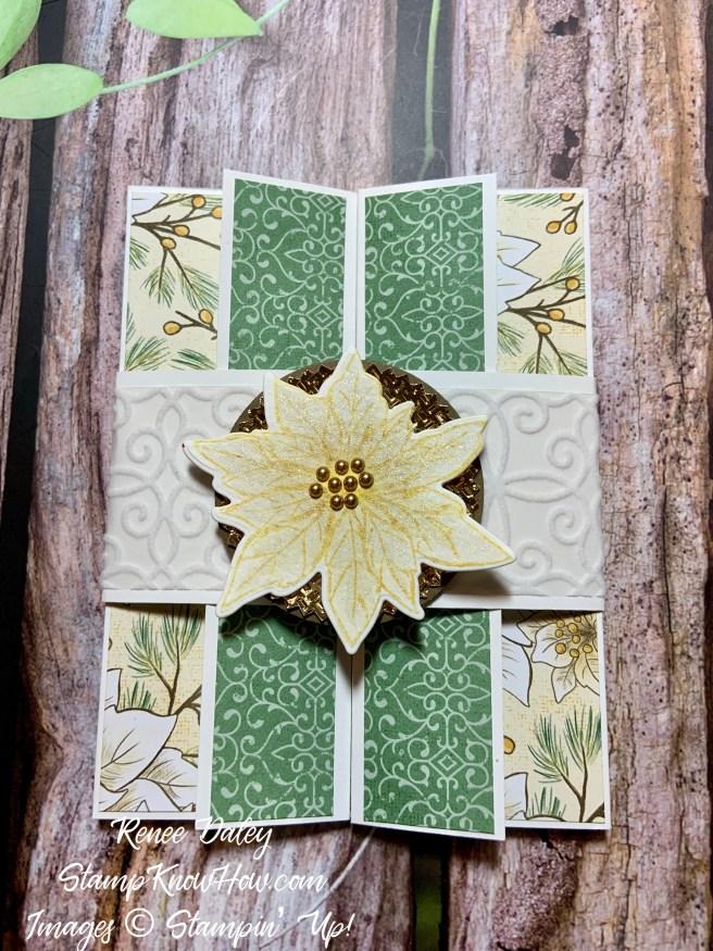 Poinsettia Petals Christmas Card