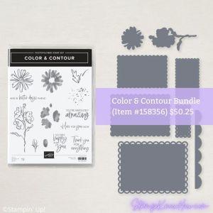 Stampin' Up Color & Contour Bundle
