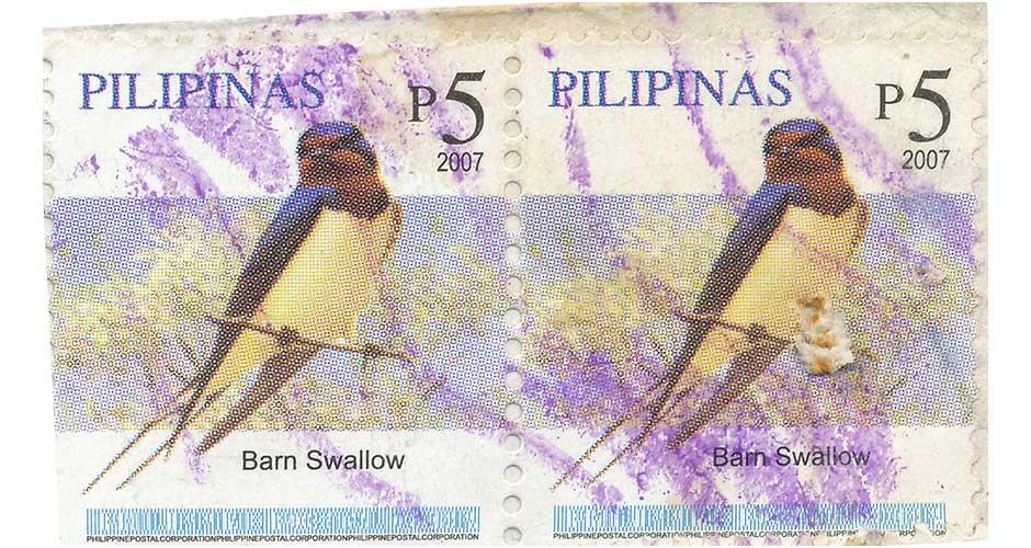 barn swallow bird stamp