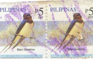 barn swallow bird stamp