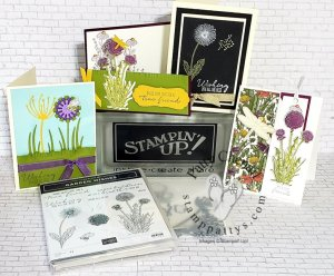 Garden Wishes from the Dandy Garden product suite in the Stampin' Up! January to June catalog!  Get this class to go now!