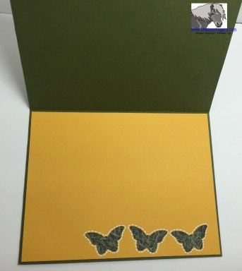 Butterflies in the Grass B-day Inside watermarked