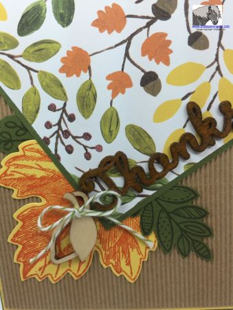 Fall Thanks CTS 137 Closeup watermarked