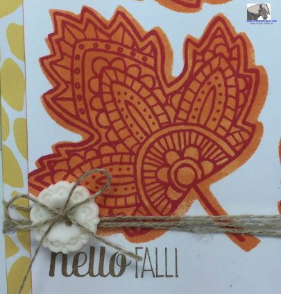 Lighthearted Hello Fall Closeup watermarked