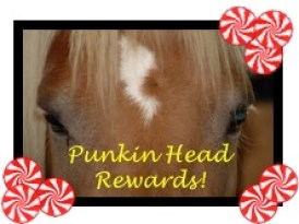 Punkin Head Rewads