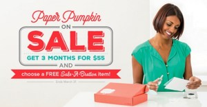 paper-pumpkin-on-sale-stamp-with-amy-k