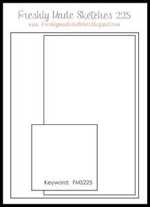 FMS 225 Sketch