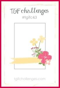 TGIFc43 Sketch