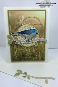 Best Birds Sympathy 6 - Stamps-N-Lingers