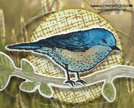 Best Birds Sympathy 8 - Stamps-N-Lingers