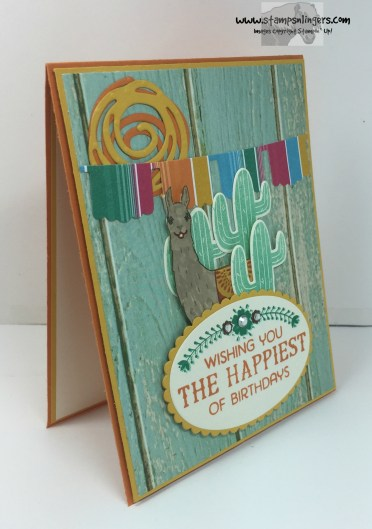 Birthday Fiesta Birthday Card 2 - Stamps-N-Lingers