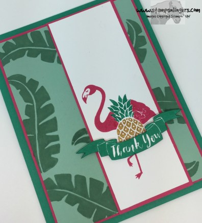 Pop of Paradise Thank You 4 - Stamps-N-Lingers