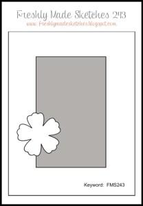 FMS 243 Sketch