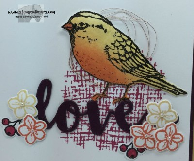 Love a Best Bird 8 - Stamps-N-Lingers