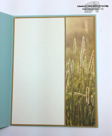 Wetlands Z-Fold 4 - Stamps-N-Lingers